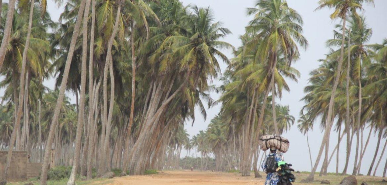 NBE in Benin